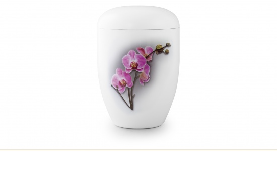 Orchidee   <small>(U87)</small>